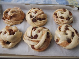 Cinnamon Raisin Buns using Asian Milk Bread Dough